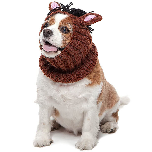 Fun and Functional Horse Beanie for Dogs