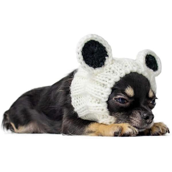 Eye Catchy Panda Bear Beanie for Dogs