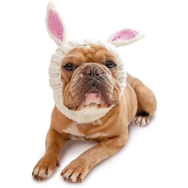 White Innocent Bunny Dog Beanie