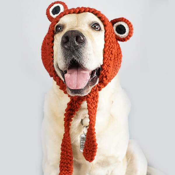 Beanie With Tie Up Straps for All Dogs