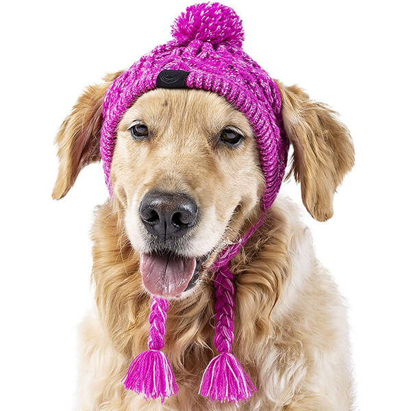 Hot Pink Beanie for All Medium And Large Sized Dogs