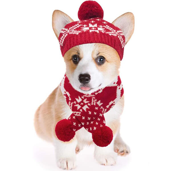Christmas Beanies for All Dogs With Scarf