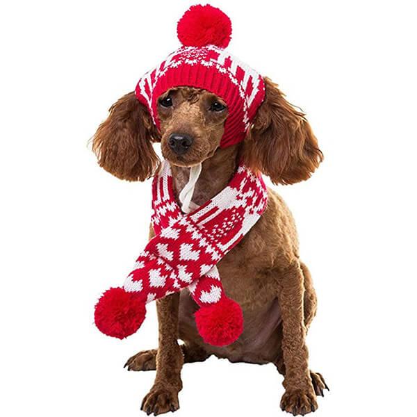 Warm Dog Beanie Set With Scarf