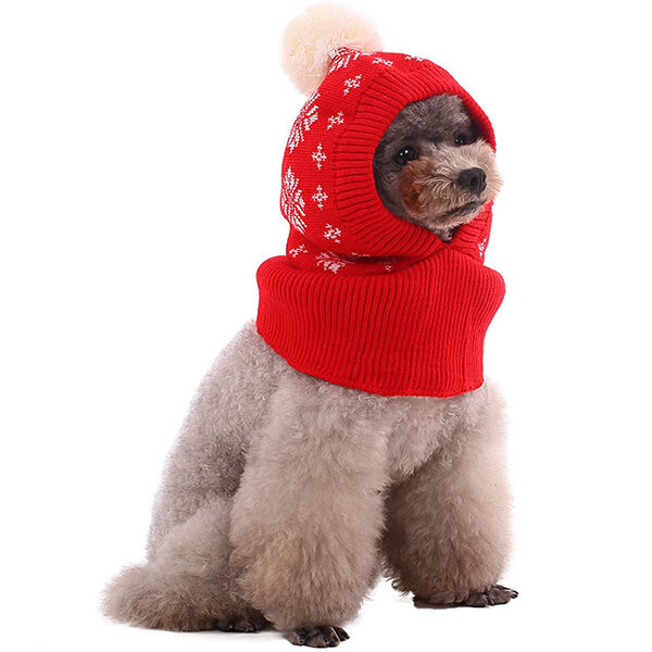 Full Coverage Dog Beanie In All Sizes