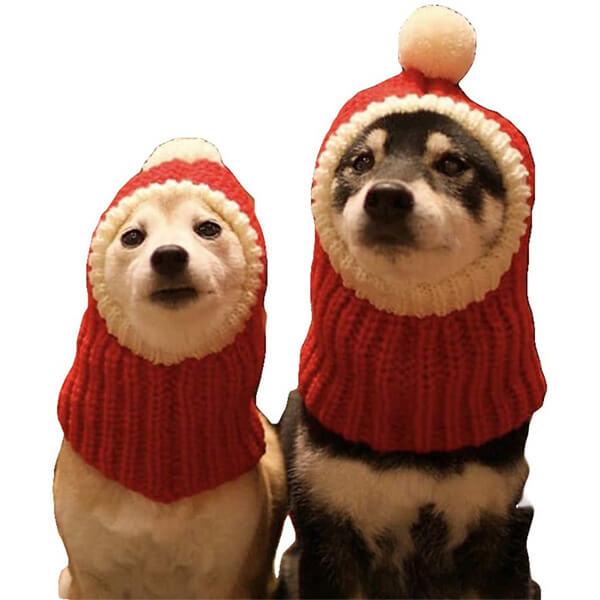 Dog Christmas Beanie In All Custom Sizes