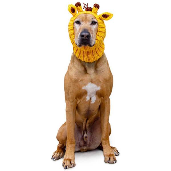 Warm Yellow Giraffe Dog Beanie In All Sizes