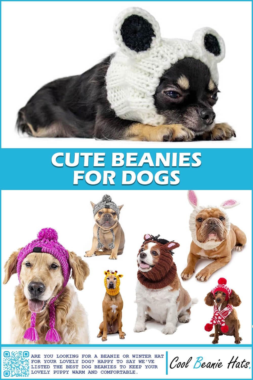 dog beanies